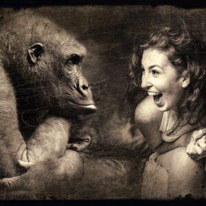 composing, monkey, woman-2925179